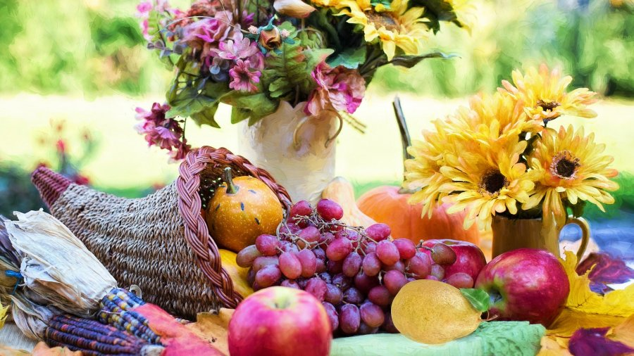 21 Beautiful Thanksgiving Quotes to Share in Grace and Gratitude